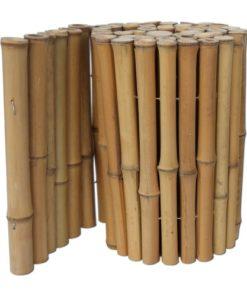 Bambu pitsi