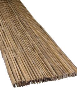 Bambu Sinetti urilla